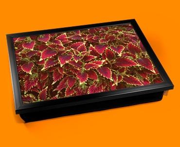 Coleus Cushion Lap Tray