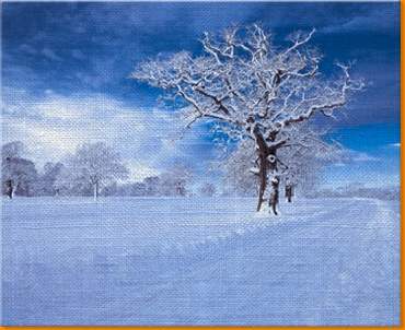 Snowy Road Canvas Art Print