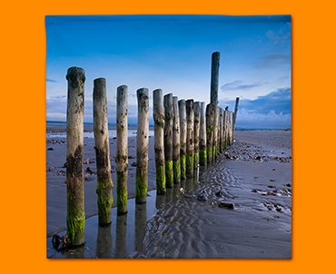 Wittering Beach Posts Napkins (Set of 4)