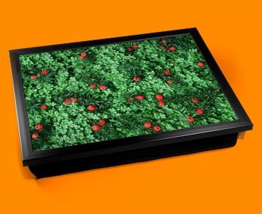 Yew Tree Cushion Lap Tray
