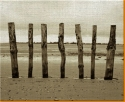 Beach Posts Canvas Art Print