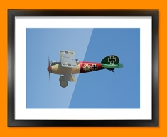 Albatros Flugzeugwerke DV Plane Framed Print