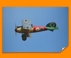 Albatros Flugzeugwerke DV Plane Poster