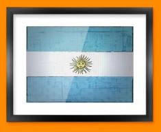 Argentina Flag Framed Print