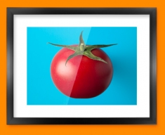 Blue Tomatoes Framed Print