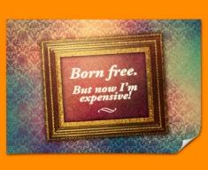 Born Free Heart Warmer Poster
