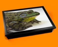 Frog Cushion Lap Tray