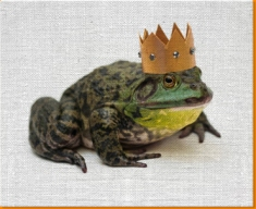 King Frog Canvas Art Print
