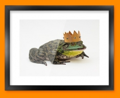 King Frog Framed Print