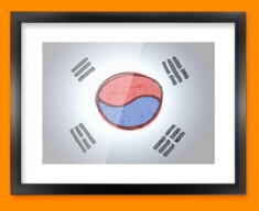 Korea Flag Framed Print