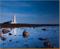 Light House Rocks Canvas Art Print