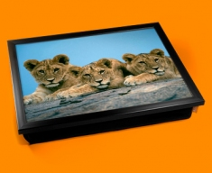 Lion Cubs Cushion Lap Tray