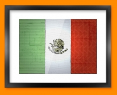 Mexico Flag Framed Print