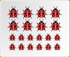 Multicoloured Ladybirds Set Wall Sticker