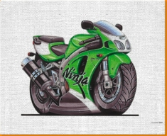 Ninja ZXR664 Canvas Art Print