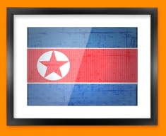Republic Korea Flag Framed Print