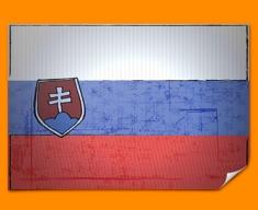 Slovenia Flag Poster