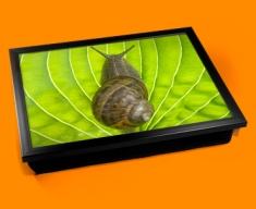 Snail Cushion Lap Tray