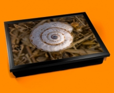 Snail Shell Cushion Lap Tray