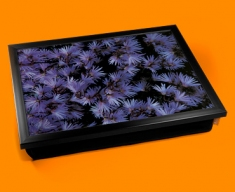 Soldanella Cushion Lap Tray