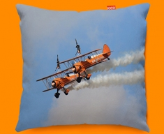 Stearman x2 Boeing Plane Sofa Cushion