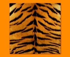 Tiger Animal Skin Napkins (Set of 4)