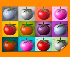 Tomato Collage Poster