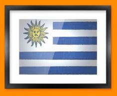 Uruguay Flag Framed Print