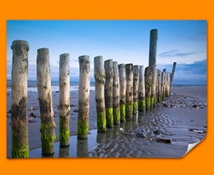 Wittering Beach Posts Poster