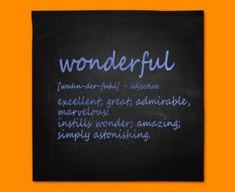 Wonderful Definition Napkins (Set of 4)